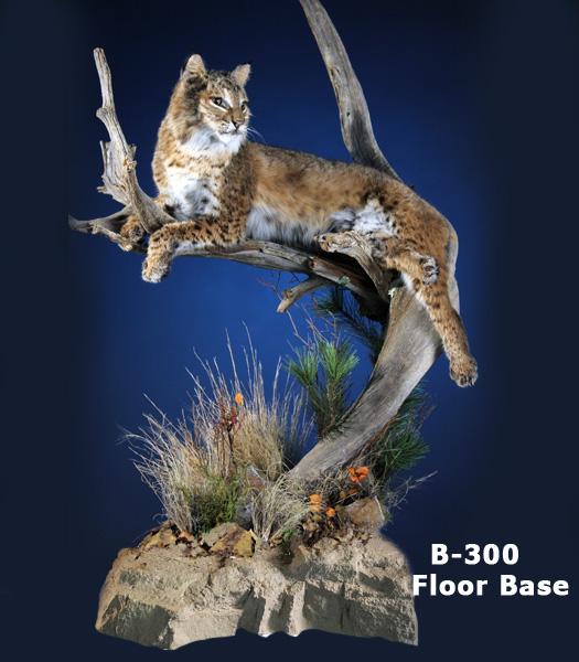 Bobcat web